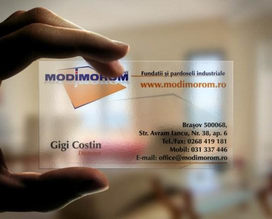 cv MODIMOROM 2013 v2